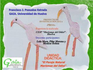 GRUPO ANDALUZ DE  INVESTIGACI N EN EL AULA HUM-133