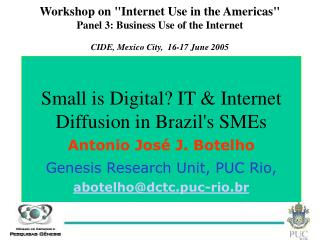 Workshop on Internet Use in the Americas Panel 3: Business Use of the Internet CIDE, Mexico City,  16-17 June 2005