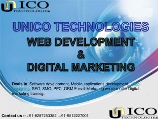 Software Compnay In Faridabad - SMO In Faridabad