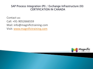 sap pi xi placements training in canada@magnifictraining.com