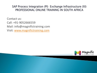 sap pi xi professional  in southafrica@magnifictraining.com