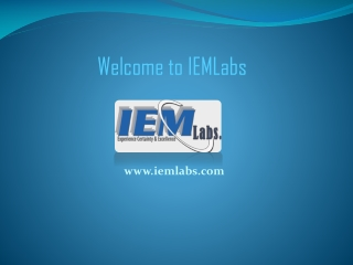 Internet Marketing Services  at IEMLabs
