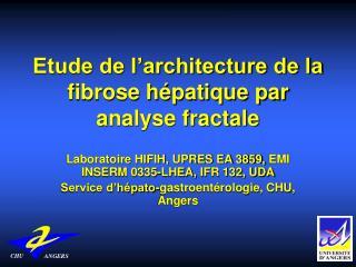 Etude de l architecture de la fibrose h patique par analyse fractale