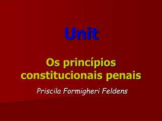 Unit  Os princ pios constitucionais penais