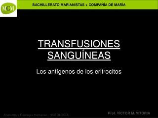 TRANSFUSIONES SANGU NEAS