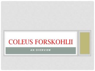 Coleus forskohlii - An Overview