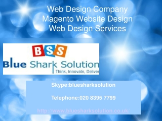Web Design Company: best way to optimize your website