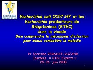 Escherichia coli O157:H7 et les Escherichia producteurs de Shigatoxines STEC dans la viande  Bien comprendre le m canism