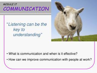 MODULE 17 COMMUNICATION