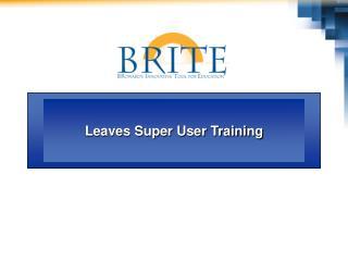 SAP BRITE Help