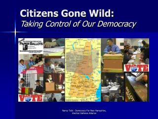citizens gone wild: taking control of our democracy