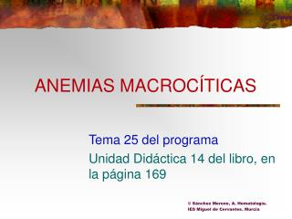 ANEMIAS MACROC TICAS
