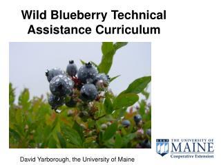 wild blueberry technical assistance curriculum