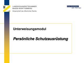 Unterweisungsmodul     Pers nliche Schutzausr stung