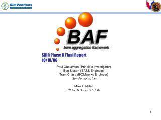 sbir phase ii final report