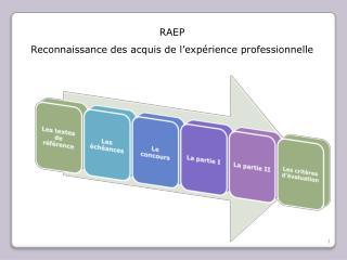 RAEP  Reconnaissance des acquis de l exp rience professionnelle