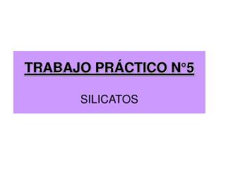 TRABAJO PR CTICO N 5  SILICATOS