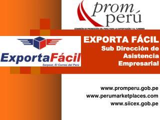 EXPORTA F CIL  Sub Direcci n de  Asistencia  Empresarial