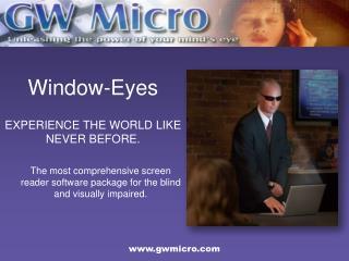 Why Window-Eyes