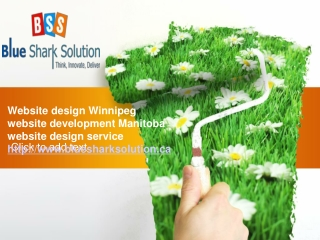 Website design Winnipeg-a boost to online business trends