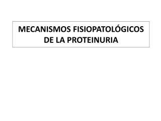MECANISMOS FISIOPATOL GICOS DE LA PROTEINURIA