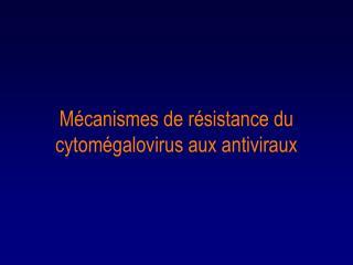 M canismes de r sistance du cytom galovirus aux antiviraux