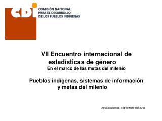 VII Encuentro internacional de estad sticas de g nero En el marco de las metas del milenio  Pueblos ind genas, sistemas