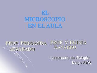PROF. FERNANDA ALVARADO