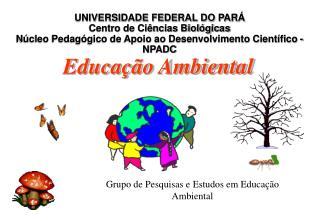 Grupo de Pesquisas e Estudos em Educa  o Ambiental