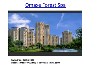Omaxe Project in Faridabad