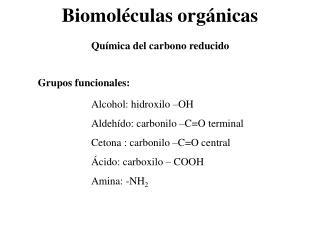 Biomol culas org nicas