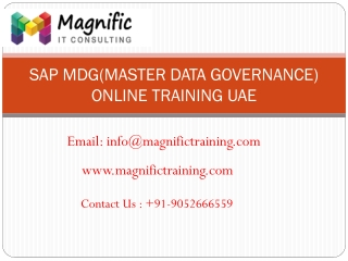 SAP MDG Online Training uae | MAGNIFIC TRAINI