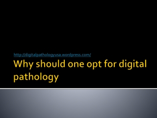 Digital pathology whole slide scanner|Digital Pathology Scan