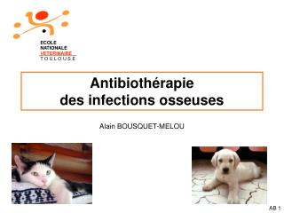 Antibioth rapie des infections osseuses