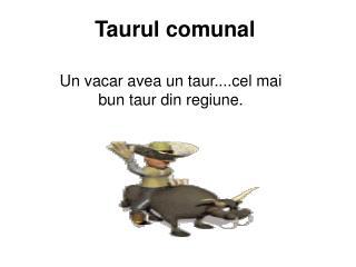 Taurul comunal