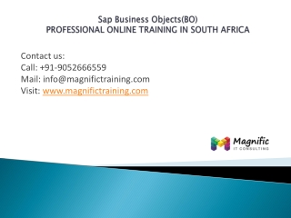 Sap Business Objects(BO)professional training in southafrica