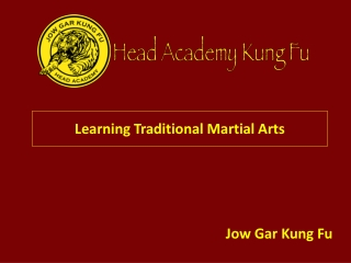Learning Traditional Martial Arts