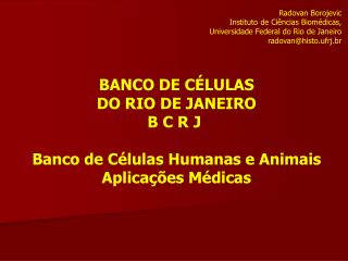 Radovan Borojevic  Instituto de Ci ncias Biom dicas,  Universidade Federal do Rio de Janeiro radovanhisto.ufrj.br