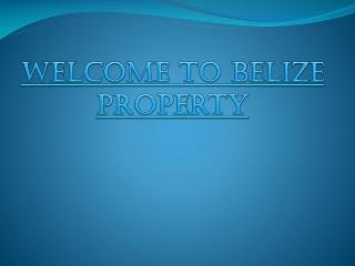 Belize Property