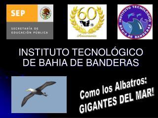 INSTITUTO TECNOL GICO DE BAHIA DE BANDERAS