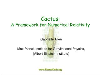 Cactus:  A Framework for Numerical Relativity