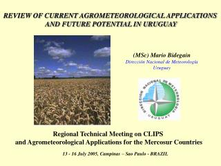 REVIEW OF CURRENT AGROMETEOROLOGICAL APPLICATIONS  AND FUTURE POTENTIAL IN URUGUAY