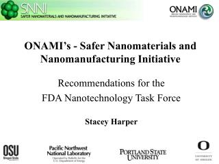 Issues for Nanotechnology