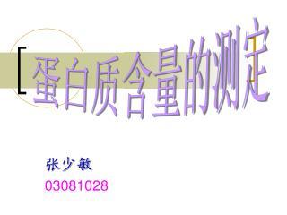 张少敏03081028