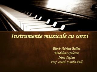 Instrumente muzicale cu corzi