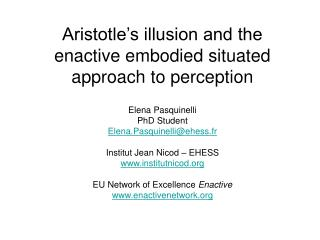 Enactive embodied situated approach