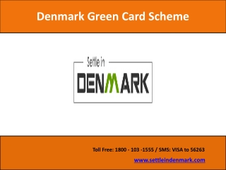 Denmark Green Card Consultants