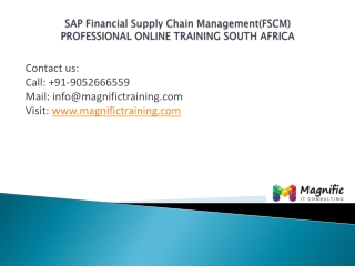 Sap Financial Supply Chain Management(FSCM)south africa