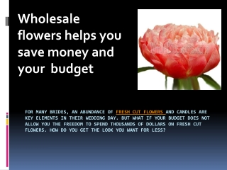 Wholesale flowers helps you save money and your  budget