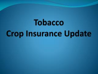 Tobacco Crop Insurance Update